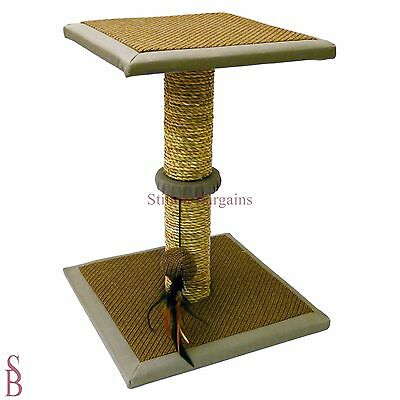 Seagrass Cat Scratching Tree - BNIB - kitten scratch post pet