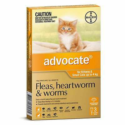 Advocate Cat & Kitten Under 4KG Orange (3 Pack) Flea, Heartworm & Worm Spot On