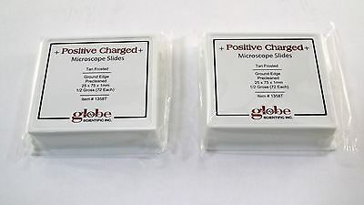 Globe Scientific Microscope Slides 1358T Charged Precleaned Ground Edge 144pcs
