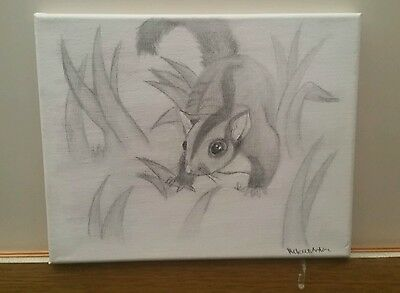 Sugar Glider Canvas