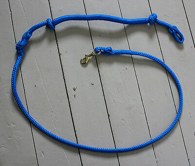 Dog pulling shock absorber line designed to be use with a sled dog harness