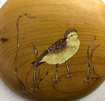 Hand Painted 6 Inch Natural Brown Myrtle Wood Picture Of A Stilt Sandpiper ��