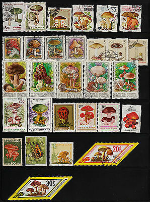 OPC 36 World Wide Mushrooms on Stamps Collection #22847