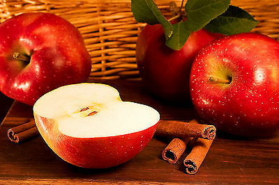 Apple Cinnamon Type Soap / Candle Fragrance Oil 1 - 16 Ounce **Free Shipping**