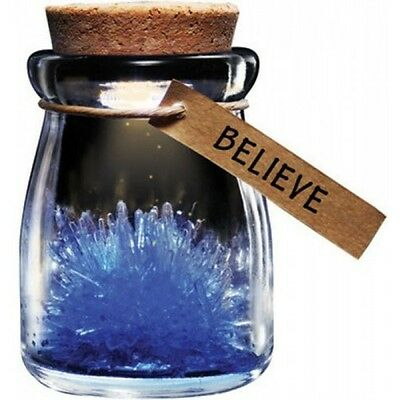 Believe Wish Crystal Grow Your Own LED Light Up Science Friendship Gift Novelty