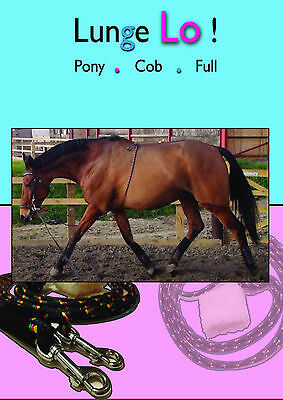 Lunge Lo - Ho Lunging Training Aid - Effective & Kind for Top Line PONY SIZE