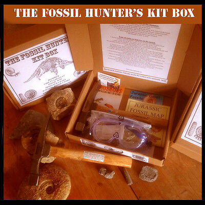 The Fossil Hunter's Kit Box - The Fossil Hunting Present!