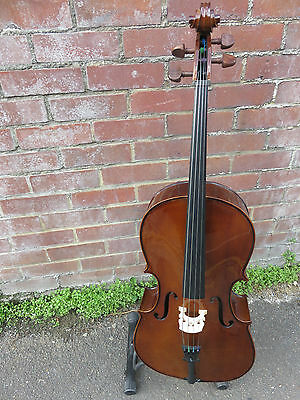 Stentor Student 1 Cello 1/4 Size. Excellent Condition.