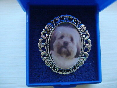 """""""LHASA APSO"""".     Brooch. Gift Boxed. Great gift."""