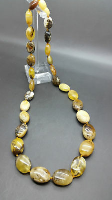 Beautiful Genuine Baltic Amber Necklace Butterscotch Egg Yolk Moss