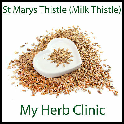 ST MARYS / MILK THISTLE POWDER 100G FAST AND FREE POSTAGE Silybum Marianum