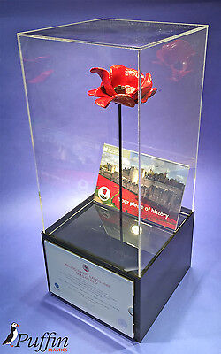 Poppy Display cases (Displayed on its Stem)