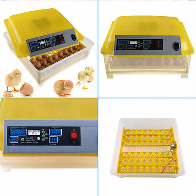 1X 48 Egg Hatcher Incubator Digital Clear Temperature Control Automatic Turning