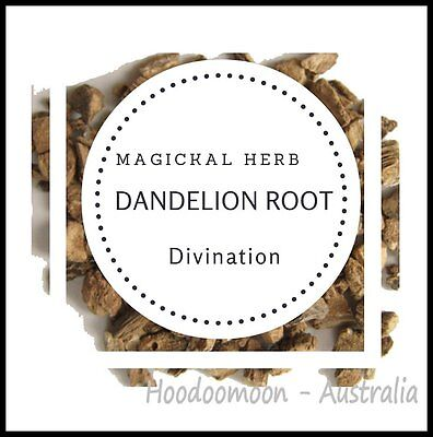 Dandelion Root 10g Magical Herb Divination Spellwork Protection