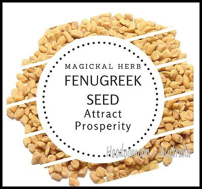 Fast Money Seeds - 10g - Fenugreek Magickal Herbs