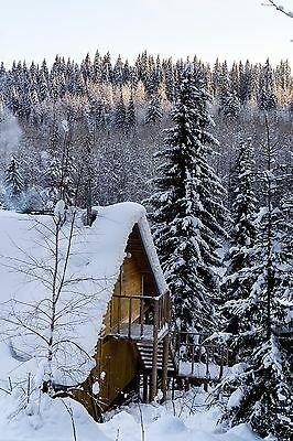 Digital Picture Image Photo Winter House Snow Forest Free Shipping