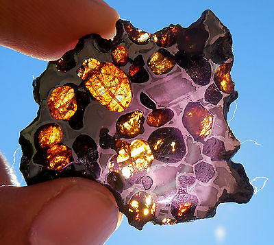 6.96 gram Springwater Pallasite Meteorite - small and affordable - TRANSLUCENT!