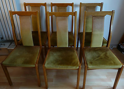 Set of 6 Dining Chairs - Upholstered - Collection Only