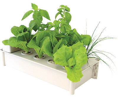 NEW !!! HydroFarm Salad Box Hydroponic Salad Garden Kit SAVE $$ W/ BAY HYDRO $$