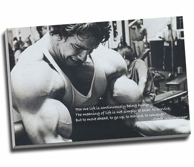 Arnold Schwarzenegger Bodybuilding Motivation Quote Canvas Print Large 30x20""