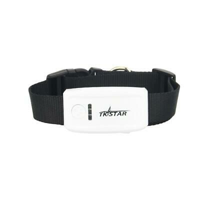 Super Mini TK909 Long Standby Time Dog Cat Pet Personal TKSTAR GPS Tracker,NoBox