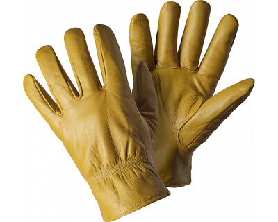 Dickies Leather Gloves (Lined)- Goat Skin Thermal Lining Thinsulate GL0200