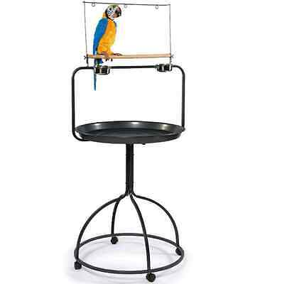 Bird Feeder Stand Parrot Play Stand Rolling Stainless Cup Toy Treat Hanger Sale