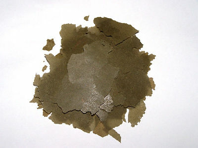 100 Grams High Quality African Cichlid Spirulina Flake