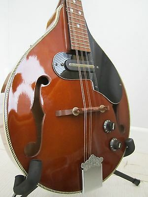 Hondo Mandolin - flat back electro-acoustic - 1990s - excellent condition