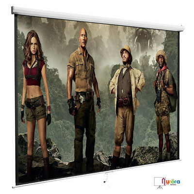 """120"""" 1:1 Manual Pull Down Projection Screen Matte Home HD Movie Theater White"""
