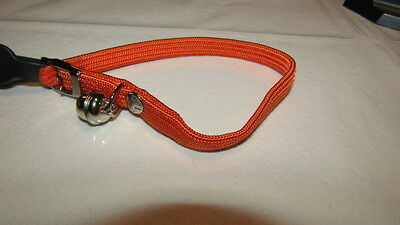 COLLIER CHAT élastique orange