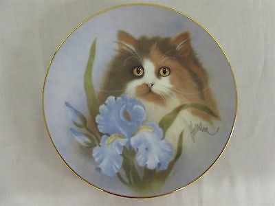 "Hamilton Collection Petals and Purrs ""Summer Sunshine"" collector's plate"