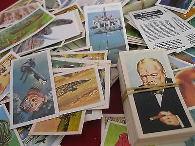 BROOKE BOND Tea Cards Vintage 1960's x100s - various in collectible tin