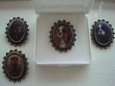 """CAVALIER KING CHARLES SPANIEL"""" Brooch. Gift Boxed."""