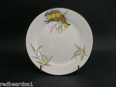 China Replacement Rare Collingwood Kookaburra Vintage China Tea Plate 14.5cms
