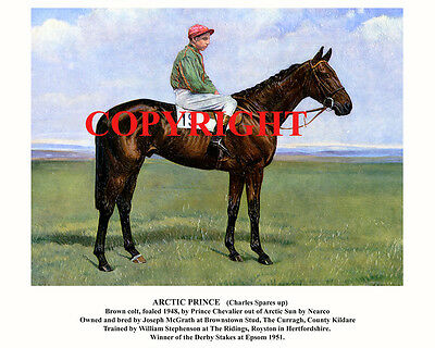 ARCTIC PRINCE & Charlie Spares: 1951 Derby winners 10x8 print-captioned