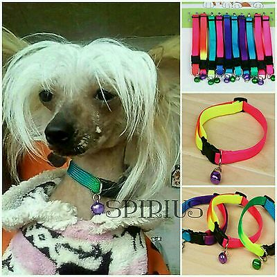 Rainbow Color Pet Collar with Bell 1cm Width Adjustable 24-34cm Length small dog
