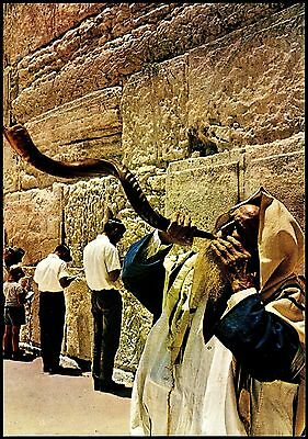 Blowing The Shofar By The Wailing Wall Jerusalem