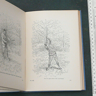 THE ART OF SHOOTING by CHARLES LANCASTER...1954 edition