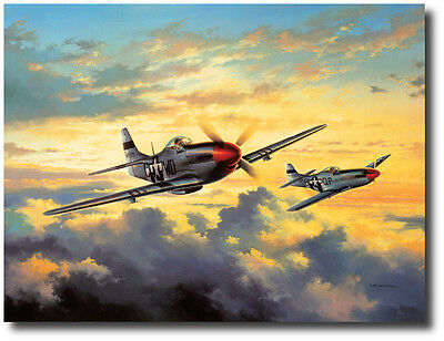 Combat Leaders by David Poole- P-51 Mustang- Col. Don Blakeslee- Aviation Art
