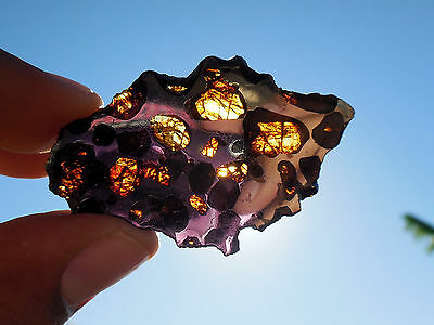 8.74 gram Springwater Pallasite Meteorite - small and affordable - TRANSLUCENT!