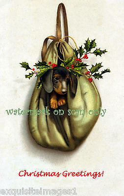 Antique Art~Christmas Dachshund in Mailbag~Holly~ NEW Christmas Note Cards