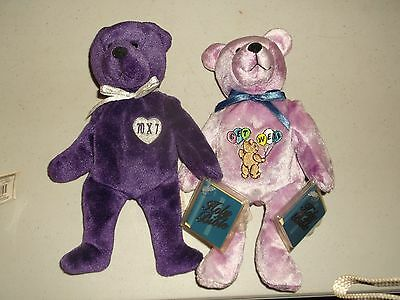 Two (2) Awesome Holy Bears Forgiveness and Get Well