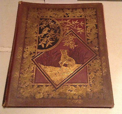 Victorian Advertising Trade Card Album,100+ Pcs. Inside, Embossed Cover , Good