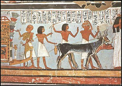 Valley Of The Kings- Wall Painting Showing Ceremonies