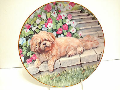 """Lounging Lhasa Apso Dog Collector Plate Danbury Mint Patricia Bourque 8.25"""" Mint"""