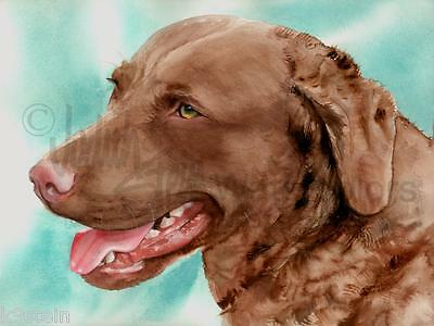 "Chesapeake Bay Retriever Dog 8x10 Print Watercolor Painting Dog Art ""Chessie"""