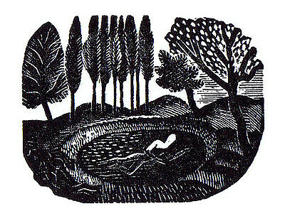 Eric Ravilious Wood Engraving Swimmer Conservation Mounted And Framed