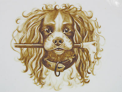 king charles spaniel dog painting porcelain plate HAND PAINTED signed dated