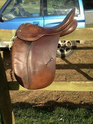 "16.5"" medium fit wh/ show saddle"